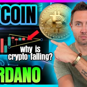 BITCOIN & CARDANO PRICE FALL! (What About Crypto Bull Market?)