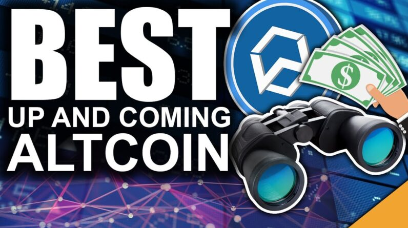 The Altcoin Of The Future (Wanchain Staking for Passive INCOME)