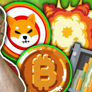 Is Shiba Inu The Best Performing Crypto Of All Time? (3 Million Percent Return Crushes Bitcoin)